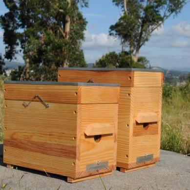 Hives-core