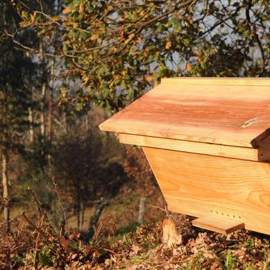 Hives en kit